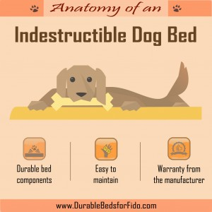 indestructible-dog-bed-infographic