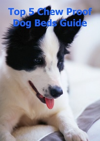 Guide to the 5 top chew proof dog beds for Sound proof dog bed