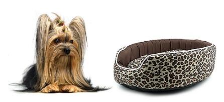 fancy-dog-beds